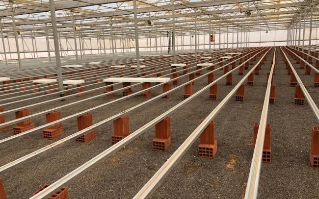 Invernadero para semillero hortícola